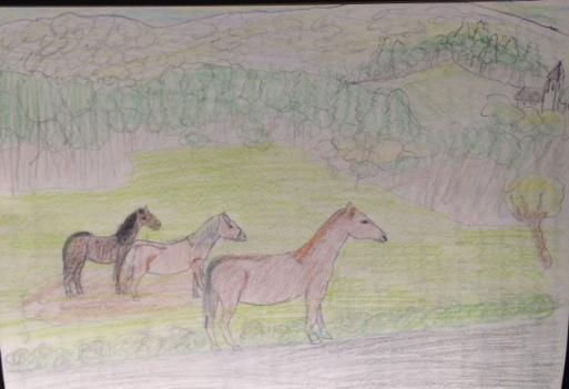 chevauxdessins